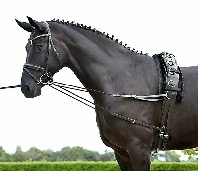 Busse Leather & Cord Lauffer Reins, Sliding Side-Reins, Lunge Training Aid