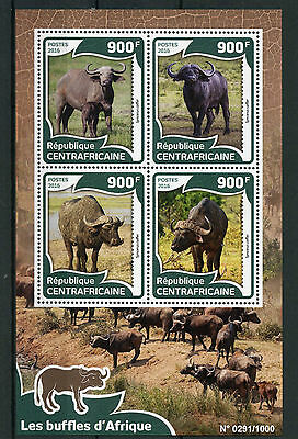 Central African Rep 2016 MNH African Buffalos 4v M/S Buffalo Wild Animals Stamps