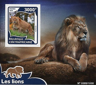 Central African Republic 2016 MNH Lions 1v S/S Wild Animals Big Cats