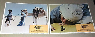 {Set of 8} THE BLACK STALLION RETURNS 11X14 USA Original LOBBY CARD 80s