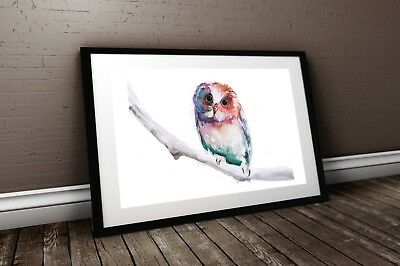 WILL ELLISTON Fine Art Print of My Original Cute Owl Watercolour Painting Signed