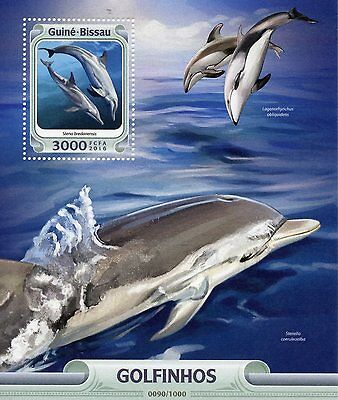 Guinea-Bissau 2016 MNH Dolphins 1v S/S Marine Animals Rough Toothed Dolphin