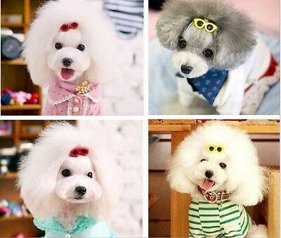 50 PCS pet grooming accessories Pet Dog puppy Hair Bow Hair Clip sunglasses