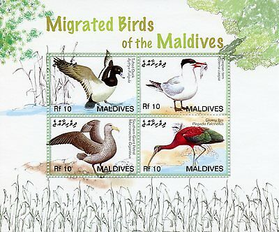 Maldives 2006 MNH Migrated Birds II 4v M/S Tufted Duck Tern Petrel Ibis Stamps
