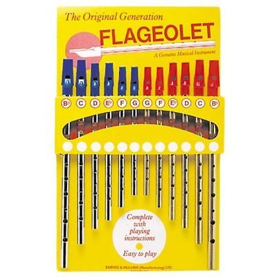 Generation Flageolet Tin Whistle in Nickel or Brass Keys Bb C D Eb F G