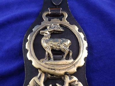 Brass Horse Harness Medallions  On Leather Deer Side & Front View Antlers Hand