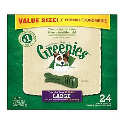 Greenies Dental Chews Large Treats For Dogs Value Tub 36 Oz. 24 Count Pet Suppl