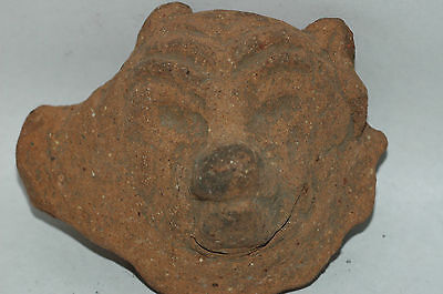 Pre-Columbian Mayan Canine Pottery Fragment CAA-57