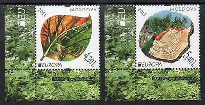 Moldova MNH 2011 EUROPA Stamps - Forest