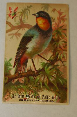 "The Great Atlantic and Pacific Tea Co.""  Victorian advertising Trade card"""