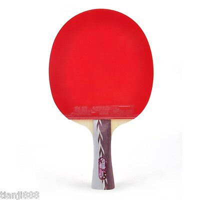 DHS A4002 Table Tennis Racket,Ping Pong Paddle Shakehand