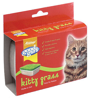 Good Girl Kitty Grass Kit for Cats Grow Your Own Indoors