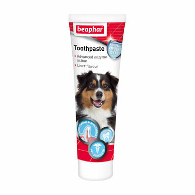Beaphar Toothpaste Dogs or Cats Dual Action Anti Plaque Anti Tartar Fresh Breath