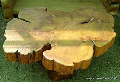 Large Naturally Unique Cypress Tree Trunk Handmade Coffee Table - Log Rustic Chi