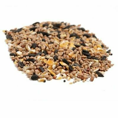 20kg Wild Bird Food/All Season Bird Feed Mix/High Oil & Energy