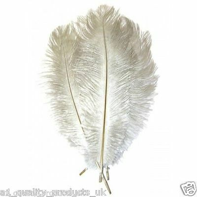 """10 x Large Ostrich Feathers, 20""""-30"""", Silver Grey 51-76cm Long 100% Natural Dyed"""