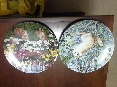 Cat plates limited edn numbered, 1 American Artists: Tarzan, 1blooming kittens