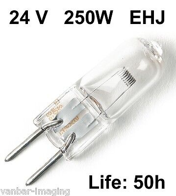 EHJ 24 volt 250 W Lamp ( 5 pack)