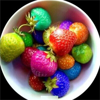 FD3683 Fruit Seeds Rainbow Strawberry Seeds Colorful Strawberry Seeds 100PCs♫