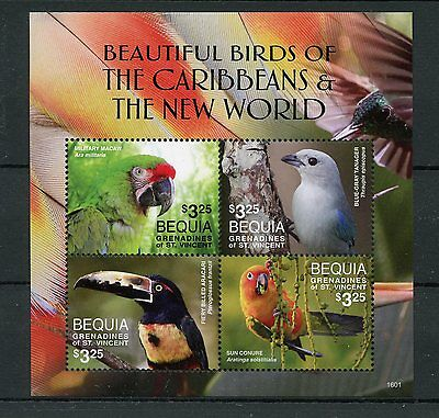 Bequia Grenadines St Vincent 2016 MNH Beautiful Birds of Caribbean 4v M/S Stamps