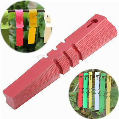 100pcs Garden Plant Pot Markers Plastic Stake Tied Tag Court Lawn Seed Labels