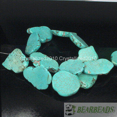 Natural Blue Turquoise Gemstone 25mm - 30mm Freeformed Nugget Sliced Beads 16''