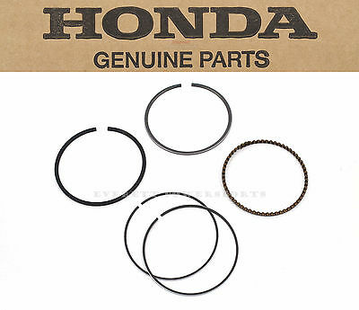 Honda STD Piston Ring Kit Rings Set 03-15 CHF NPS 50 Ruckus Metropolitan OEM#D79