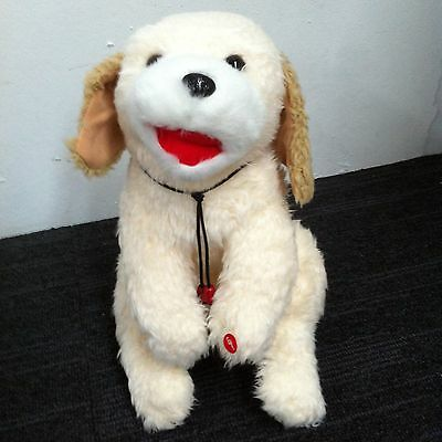 Musical soft toy ( white dog )