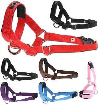 Dog Halter Halti Stop Pulling Training Headcollar Harness Control Ami Play