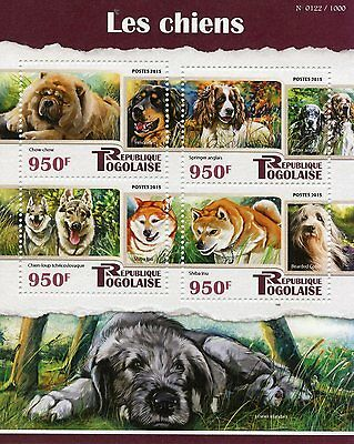 Togo 2015 MNH Dogs 4v M/S Pets Chow Chow Hovawart English Setter Springer Stamps