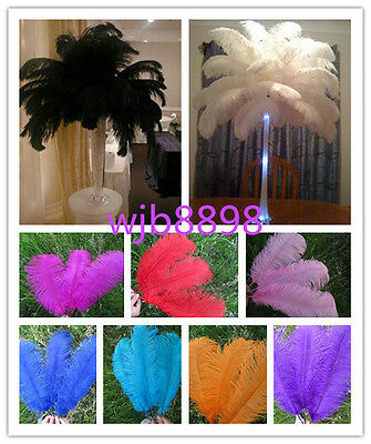 Wholesale 10/50/100 pcs beautiful 6-26 inches / 15-65 cm ostrich feathers