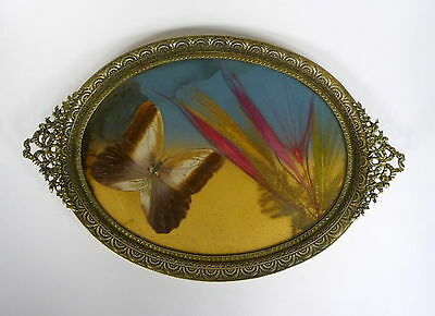 Tray Butterfly France 19th Century