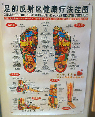 Set of 11 Acupuncture Meridian Pressure Points Charts