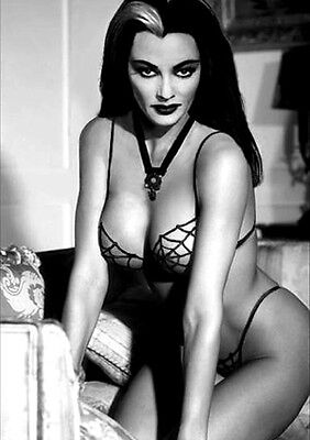 """Lily Munster - Yvonne De Carlo 2.5 x 3.5"""" MAGNET Photograph Sexy"""