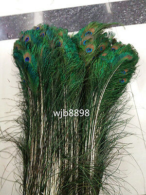 Wholesale beautiful peacock feather length 70-80 cm 28-32 inches free shipping