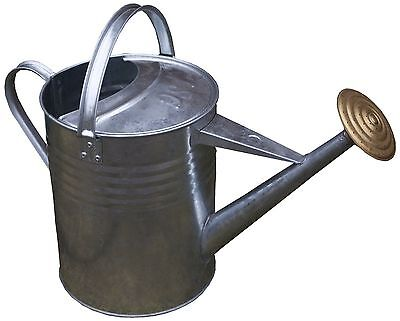 Galvanised Metal Garden Plant Watering Can with Brass Rose (9 Litre / 2 Gallon)