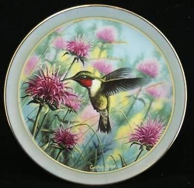Cynthie Fisher Ruby Treasures Hummingbird Collector Plate