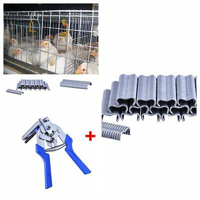 Animal Cage 600PCS M-shaped Nail + Pliers for Chicken Rabbit Birds Cages Supply