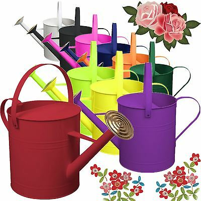Garden Plant Flower Colour Galvanised Metal Watering Can 9 Litre with Brass Rose