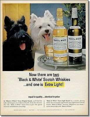 1964 Black & White Scotty Dogs - Extra Light Whisky  print-ad
