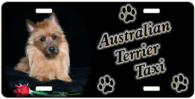 Australian Terrier 1 Taxi Line License Plate ((( SPECIAL LOW CLEARANCE PRICE )))