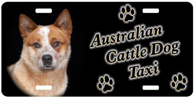 Australian Cattle Dog red Taxi Line License Plate ((SPECIAL LOW CLEARANCE PRICE)