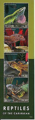 St Kitts 2013 MNH Reptiles of Caribbean 4v M/S Lizards Anole Iguana Gecko Stamps