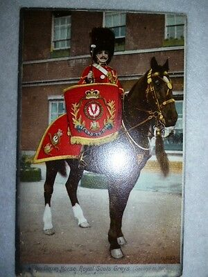 Postcard - Orthochrome - The Royal Scots Greys, Drum Horse