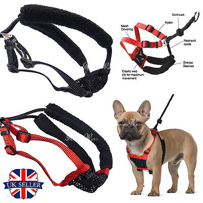 Soft Adjustable Puppy Pet Padded Non Pull Dog Harness Vest Lead Leash with Clip