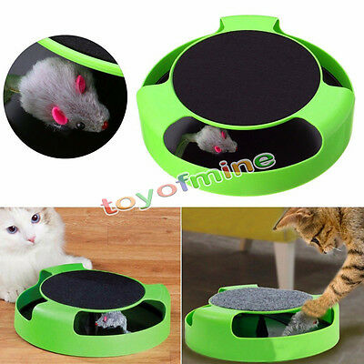 Motion Kitten Cat Toy Catch The Mouse Interactive Cat Training System Scratchpad