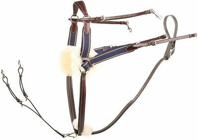 Jeffries Falcon 5 Point Competition Breastplate - Black or Havana
