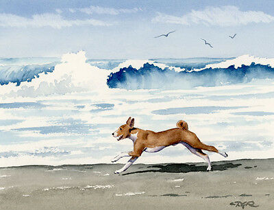 BASENJI AT THE BEACH Dog Watercolor 8 x 10 ART Print Signed by Artist DJR