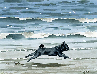 BLACK PUG AT THE BEACH Dog Watercolor 8 x 10 ART Print Signed by Artist DJR