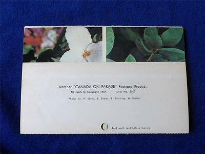 Postcard Fold Out Booklet Vintage 1967 Canada On Parade Wildflowers 6 Cards